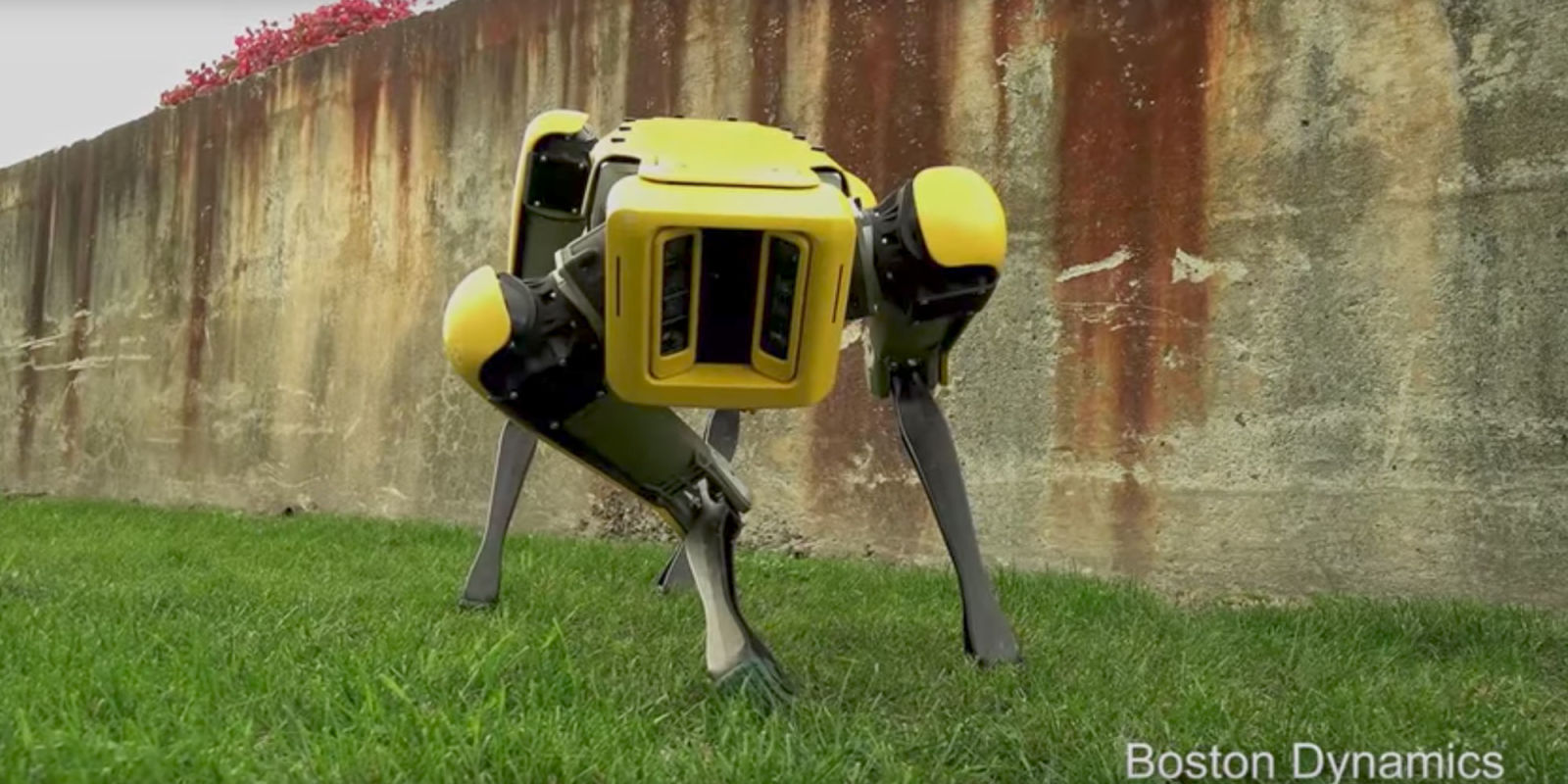 Máquinas Huyendo de Humanos